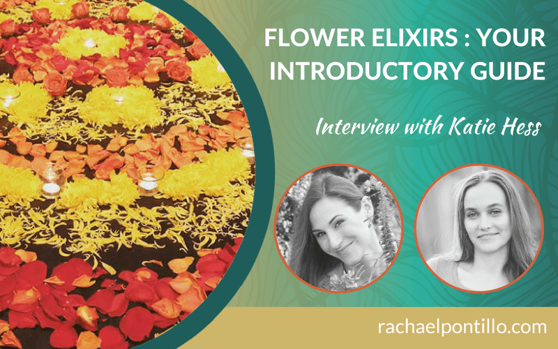 Flower Elixirs: Your Introductory Guide with Katie Hess